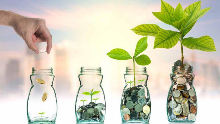 Symbolic picture of impact investing